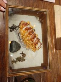 Octopus roll served on seafloor box.